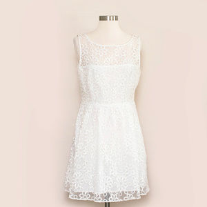 BB Dakota White Lace Fit & Flare Dress 10